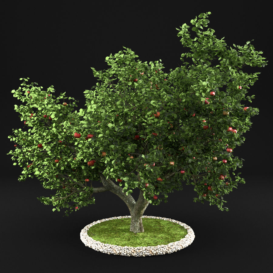 Apple Tree 10 royalty-free 3d model - Preview no. 2