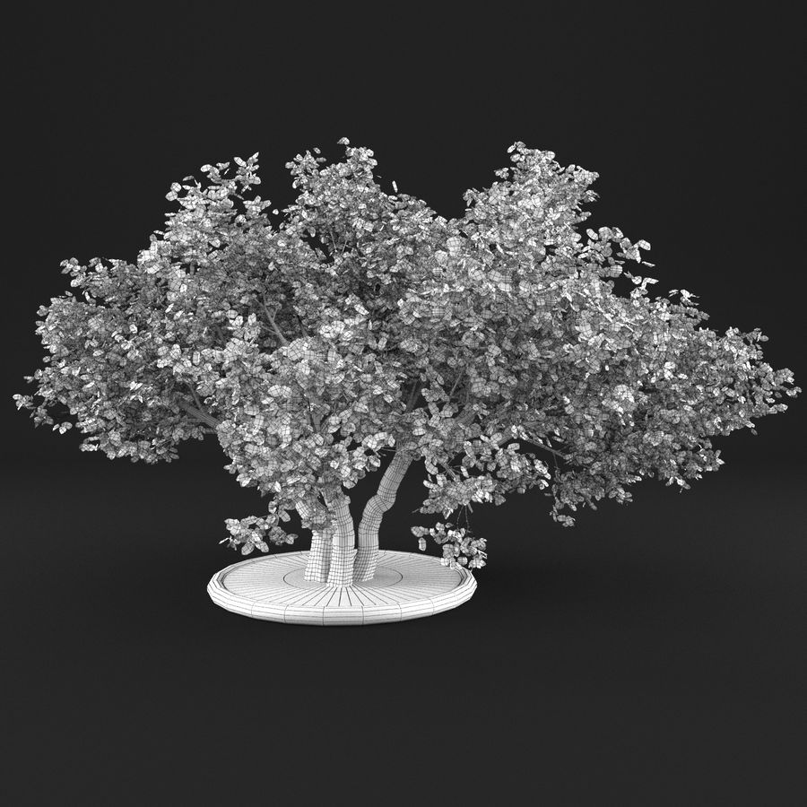 Apple Tree 11 royalty-free 3d model - Preview no. 11