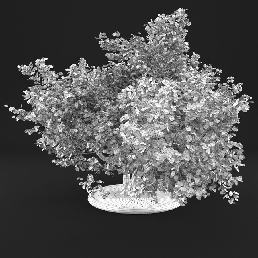 Apple Tree 11 royalty-free 3d model - Preview no. 13