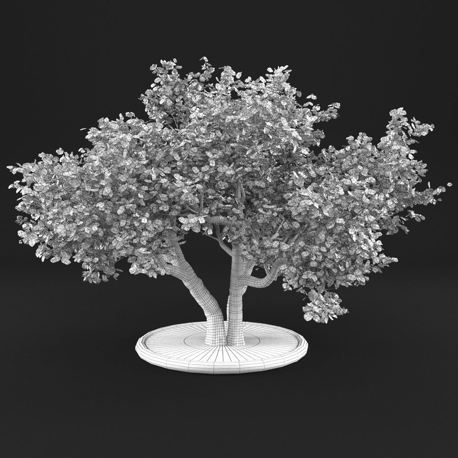 Apple Tree 11 royalty-free 3d model - Preview no. 10