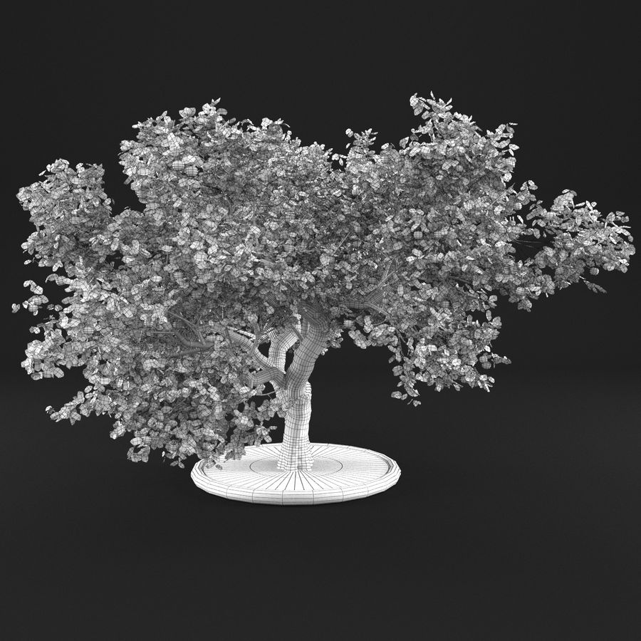 Apple Tree 14 royalty-free 3d model - Preview no. 11
