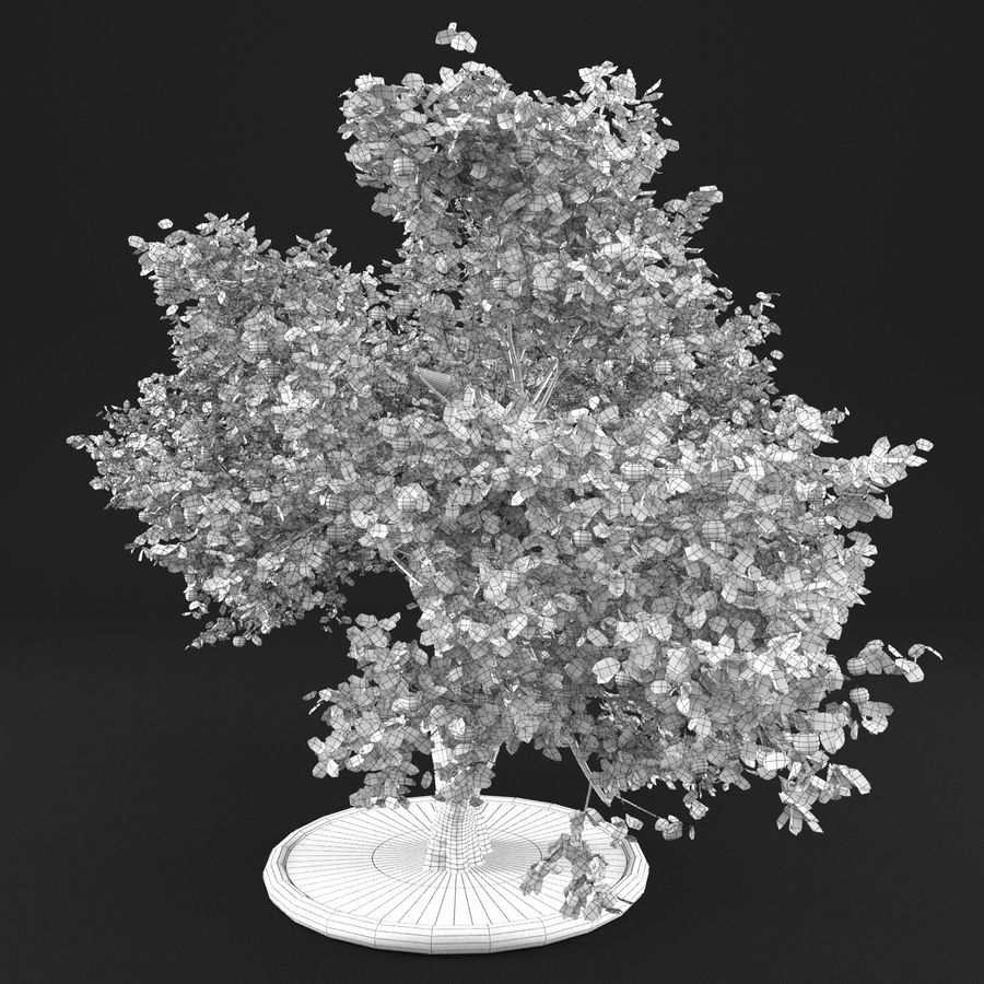 Apple Tree 14 royalty-free 3d model - Preview no. 15