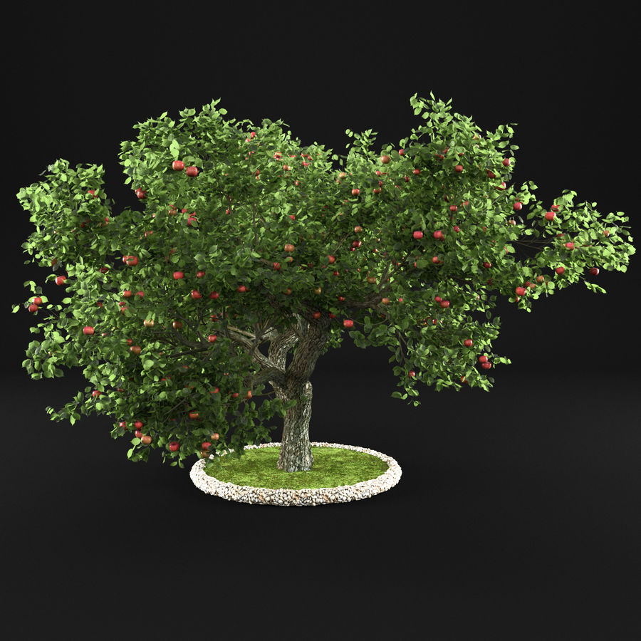 Apple Tree 14 royalty-free 3d model - Preview no. 3