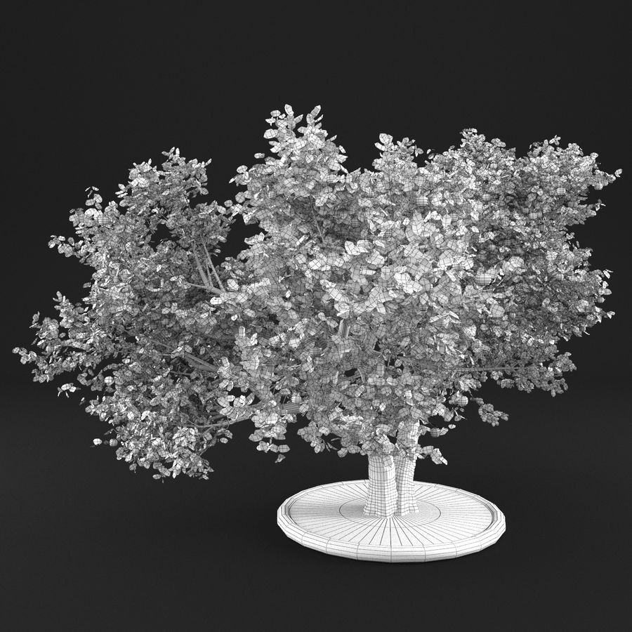 Apple Tree 14 royalty-free 3d model - Preview no. 10