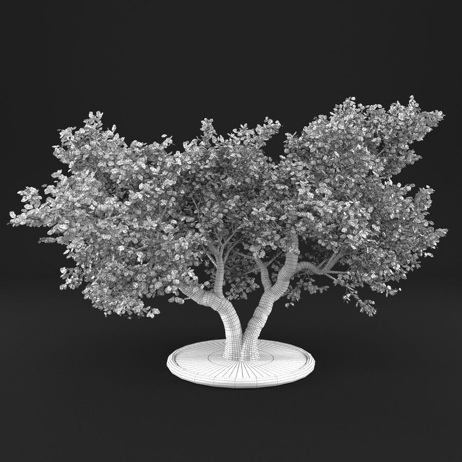 Apple Tree 14 royalty-free 3d model - Preview no. 9