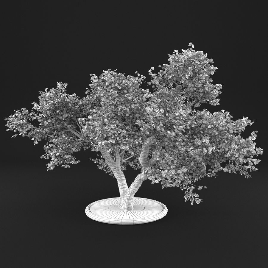 Apple Tree 14 royalty-free 3d model - Preview no. 16