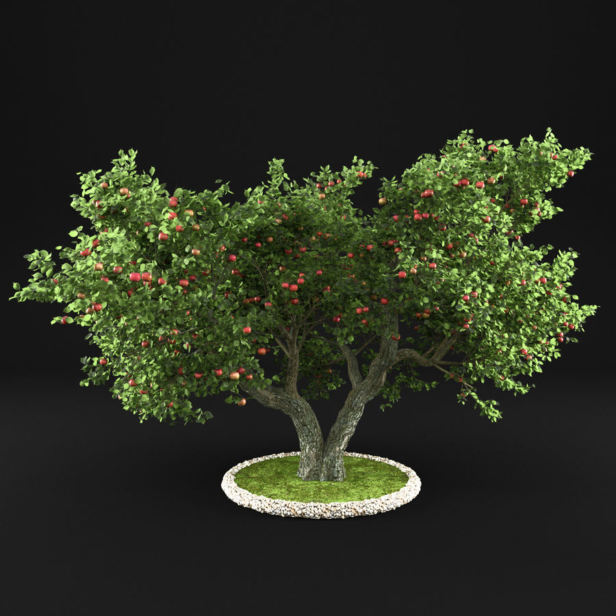 Apple Tree 14 royalty-free 3d model - Preview no. 1