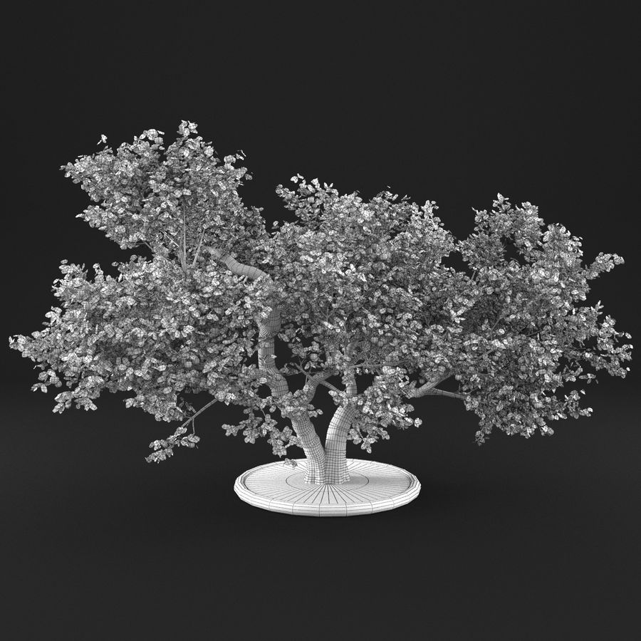 Apple Tree 14 royalty-free 3d model - Preview no. 13