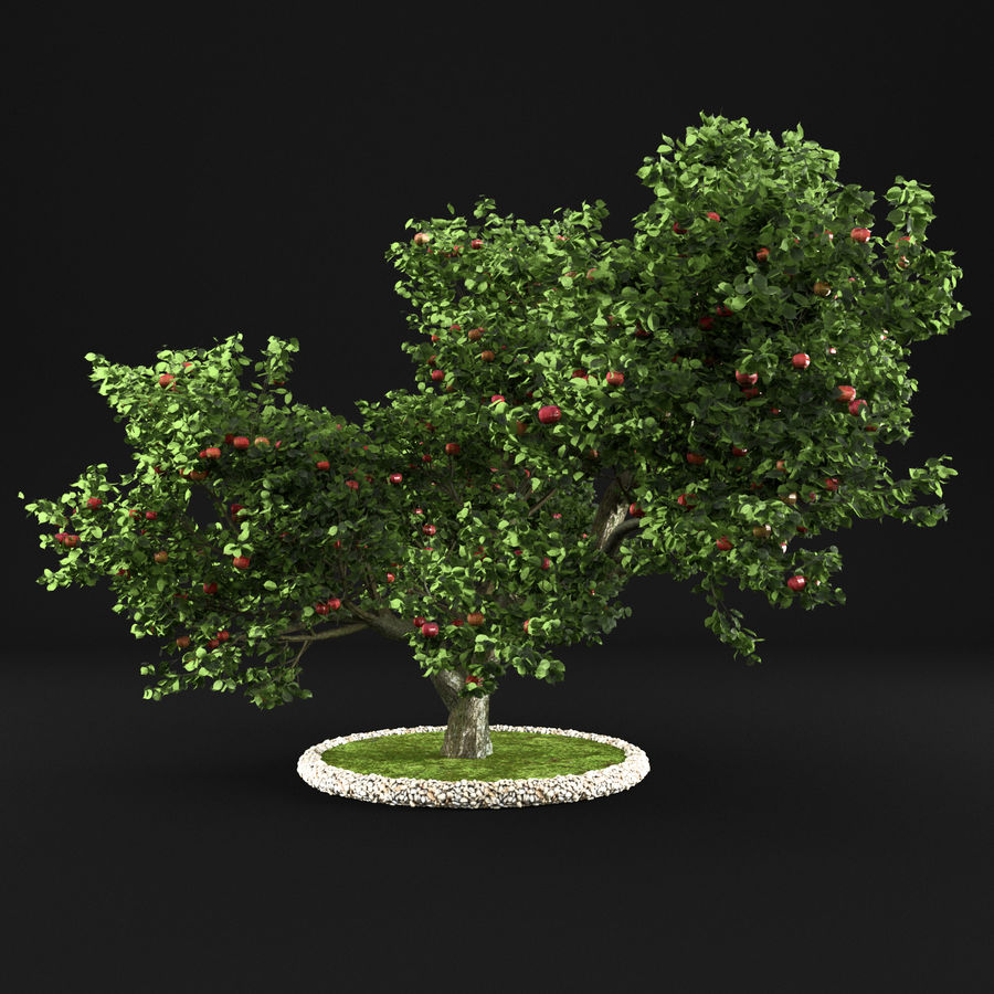 Apfelbaum 15 royalty-free 3d model - Preview no. 3