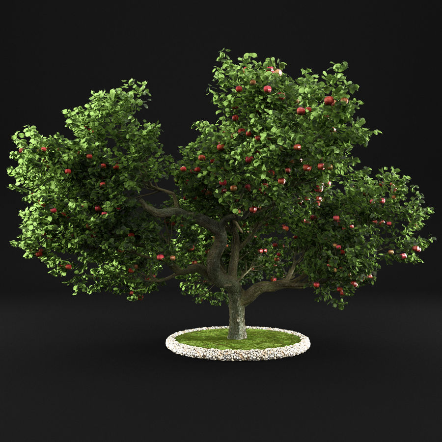 Apfelbaum 15 royalty-free 3d model - Preview no. 1