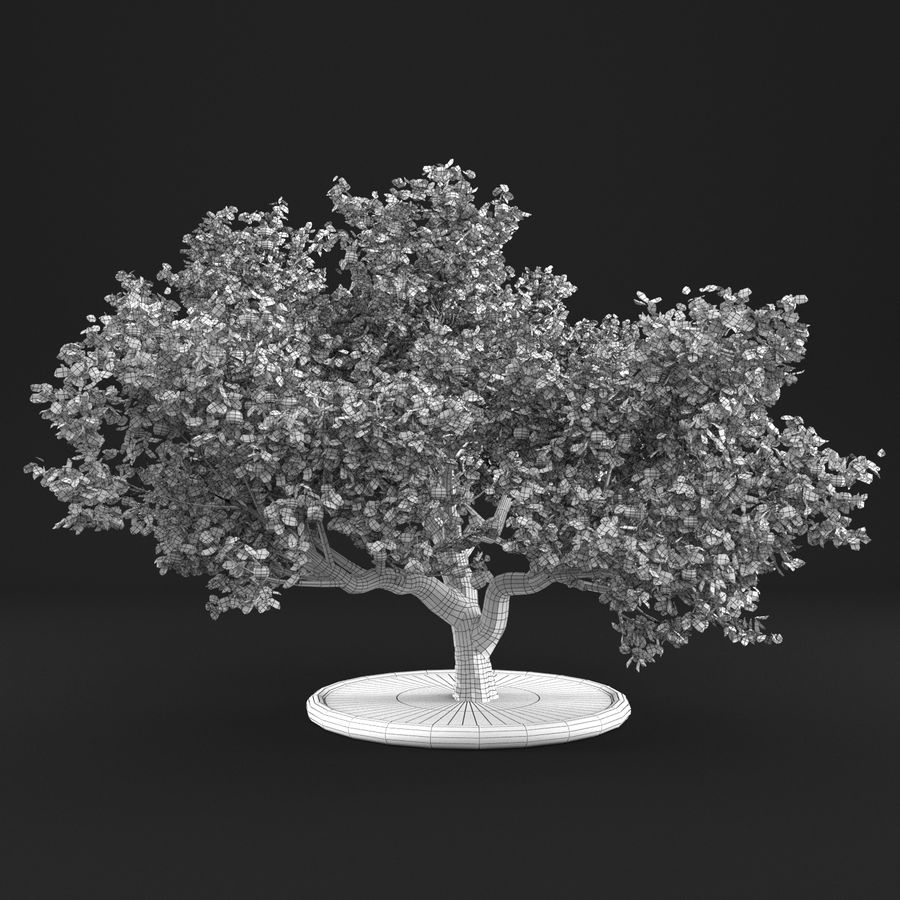 Apfelbaum 15 royalty-free 3d model - Preview no. 16