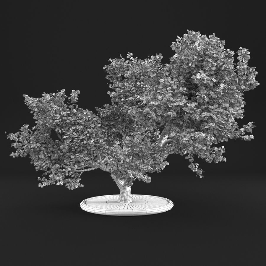 Apfelbaum 15 royalty-free 3d model - Preview no. 11