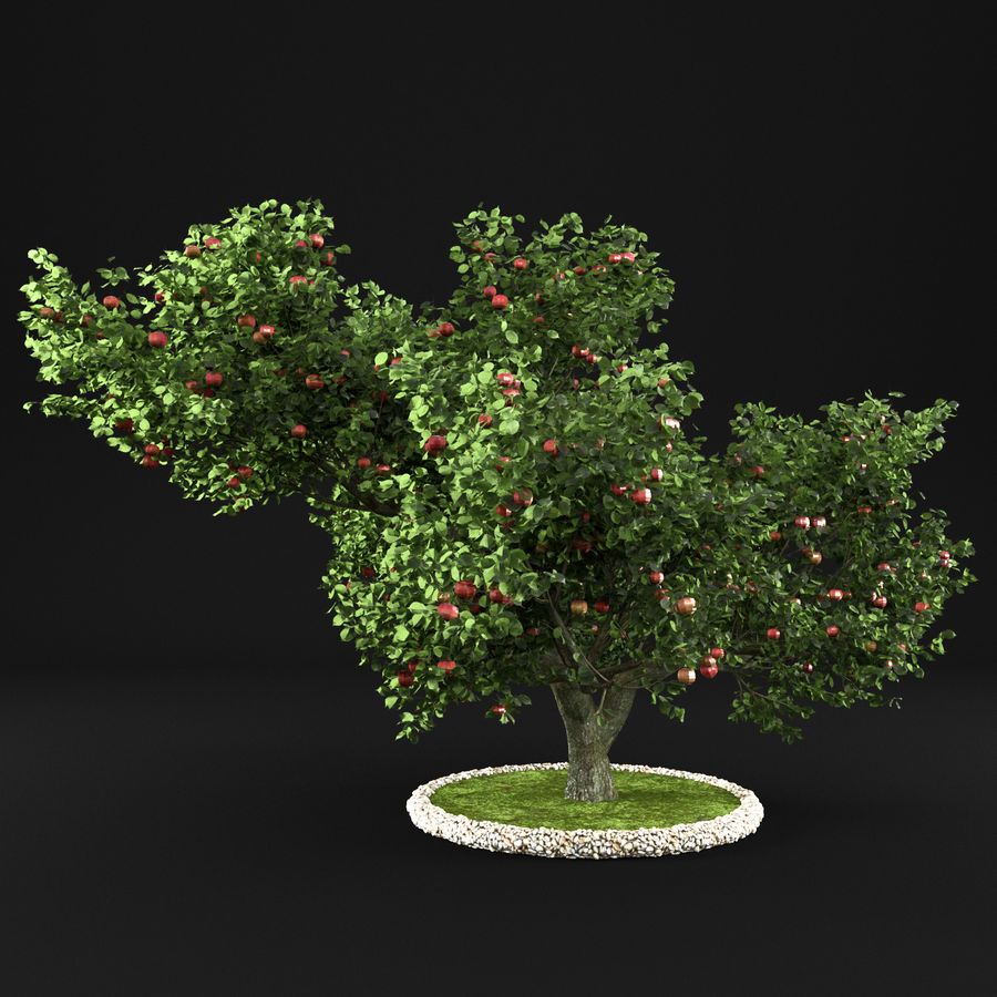 Apfelbaum 15 royalty-free 3d model - Preview no. 6