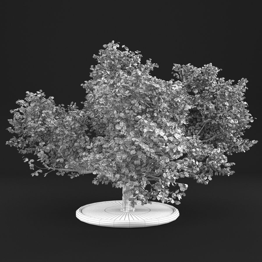 Apfelbaum 15 royalty-free 3d model - Preview no. 17