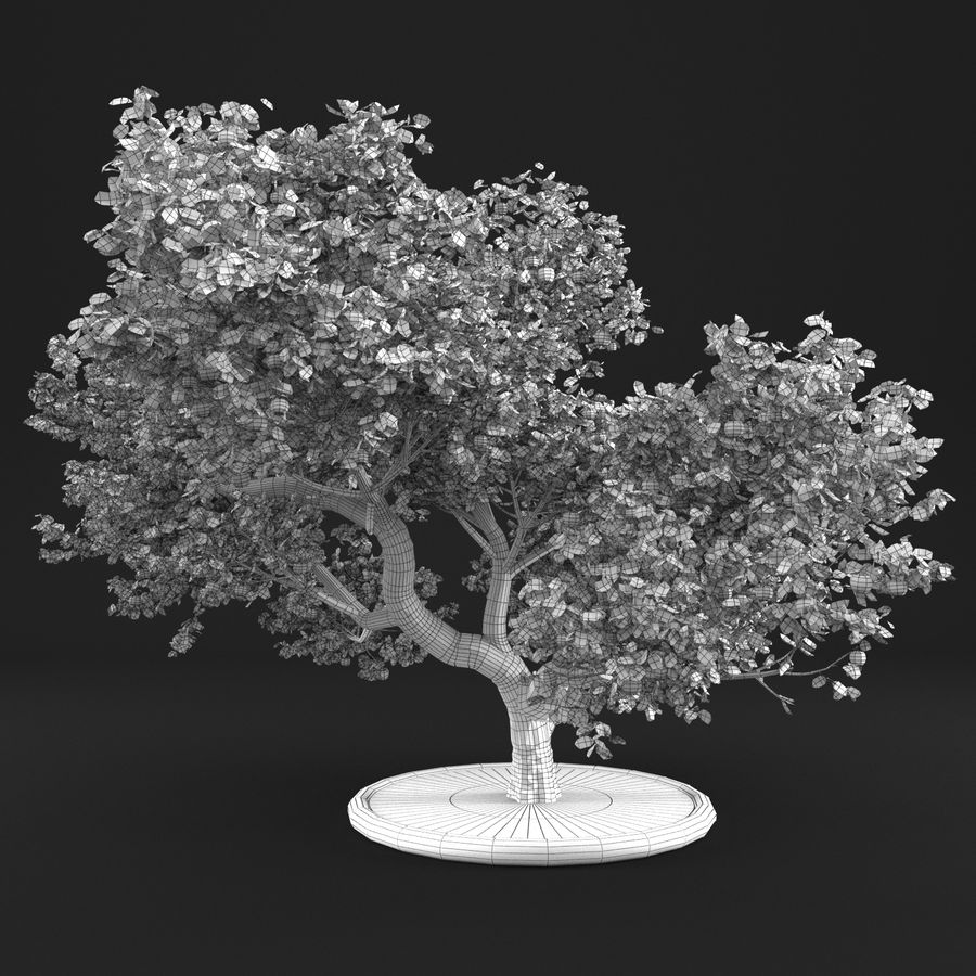 Apfelbaum 15 royalty-free 3d model - Preview no. 14