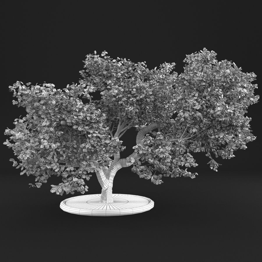 Macieira 15 royalty-free 3d model - Preview no. 10