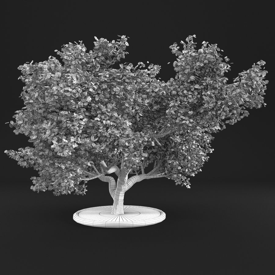 Apfelbaum 15 royalty-free 3d model - Preview no. 12