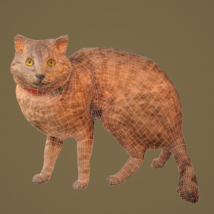 猫模型 royalty-free 3d model - Preview no. 6