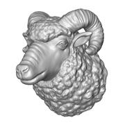 cabeça de carneiro encaracolado 3d model