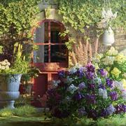 Bloemen buitenkant 3d model