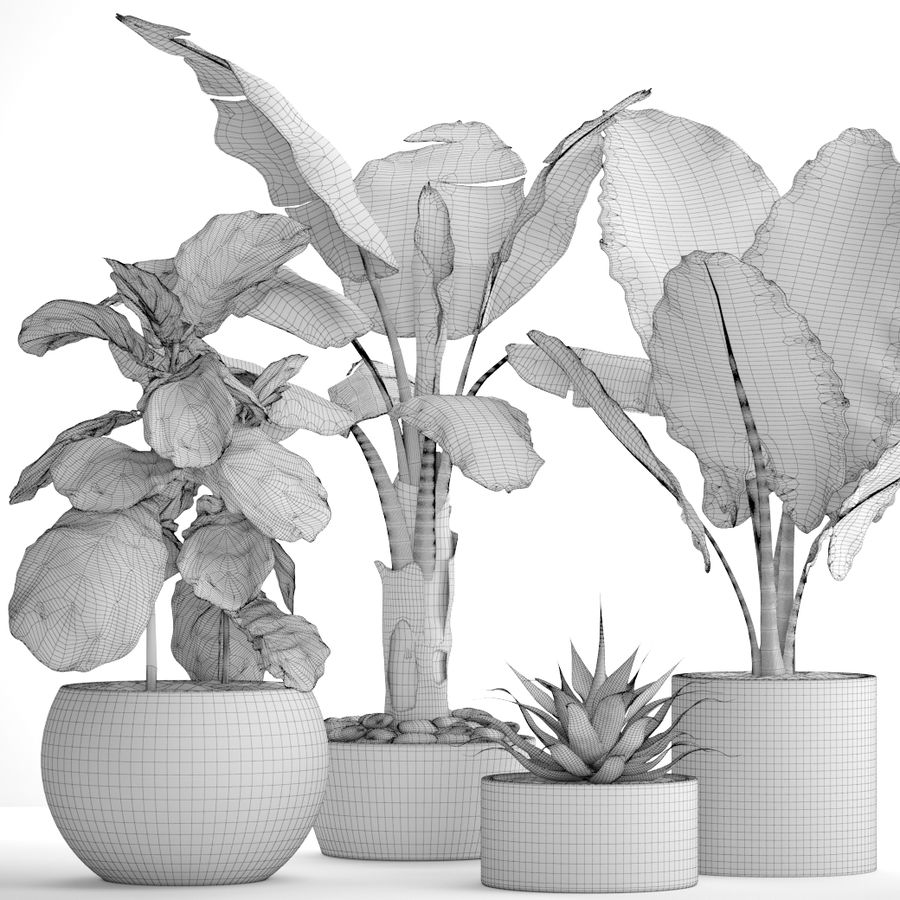 Plantes de collecte royalty-free 3d model - Preview no. 10