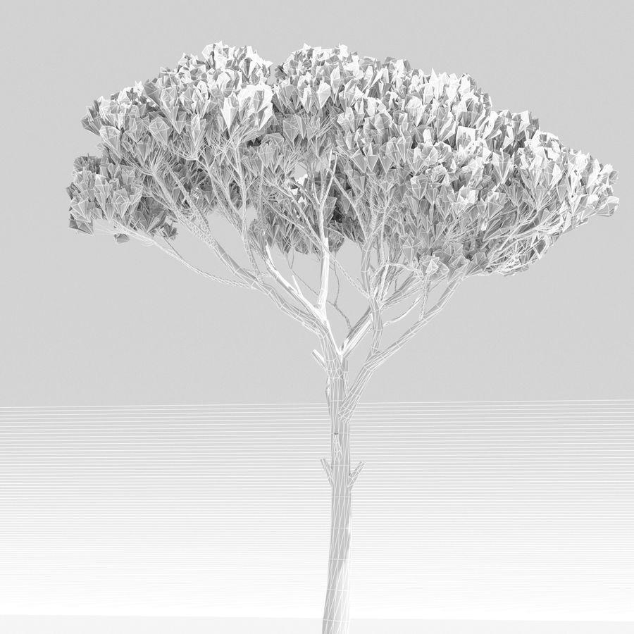 松树 royalty-free 3d model - Preview no. 6