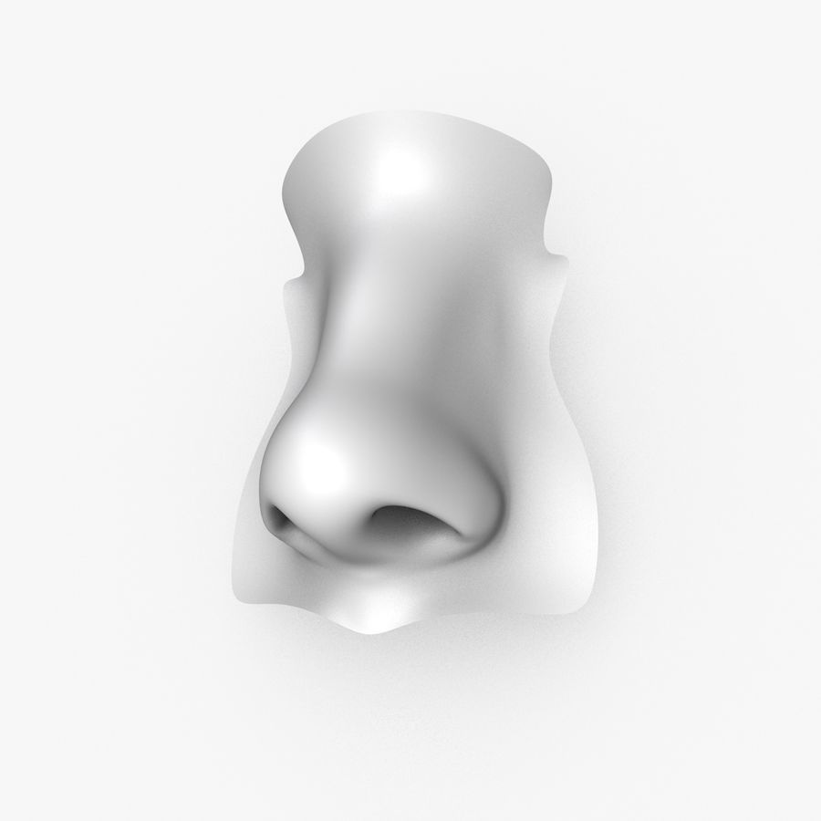 Realistic Nose of a beautiful Woman royalty-free 3d model - Preview no. 1