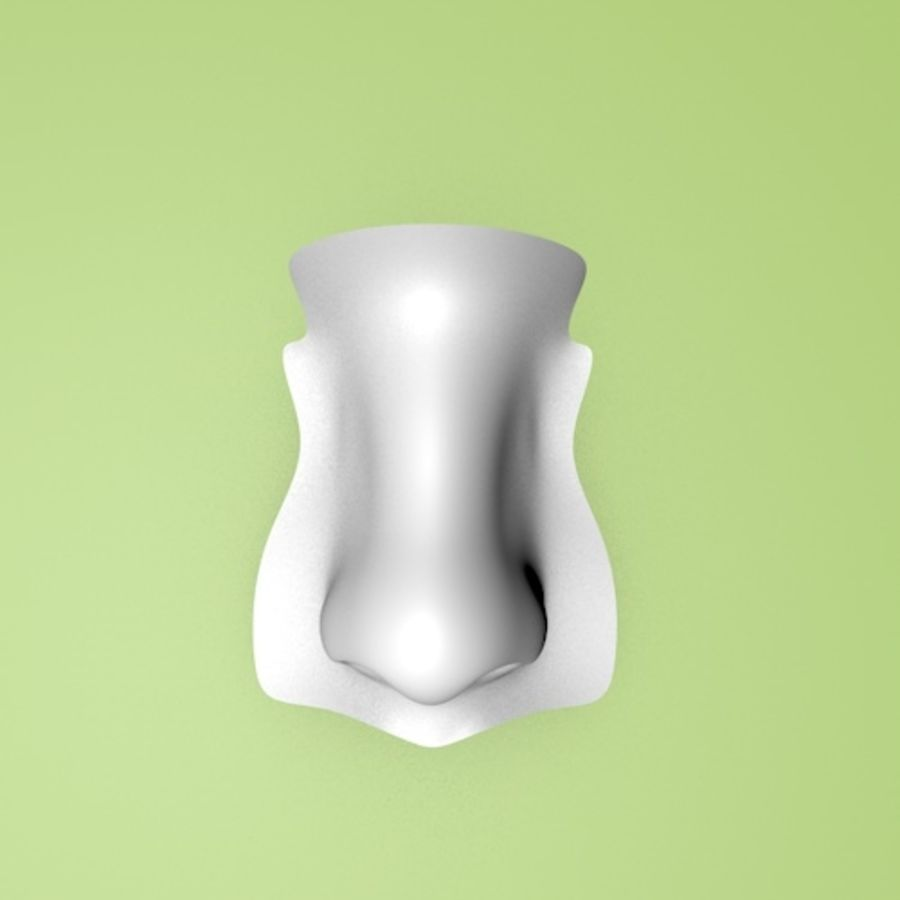 Realistic Nose of a beautiful Woman royalty-free 3d model - Preview no. 7