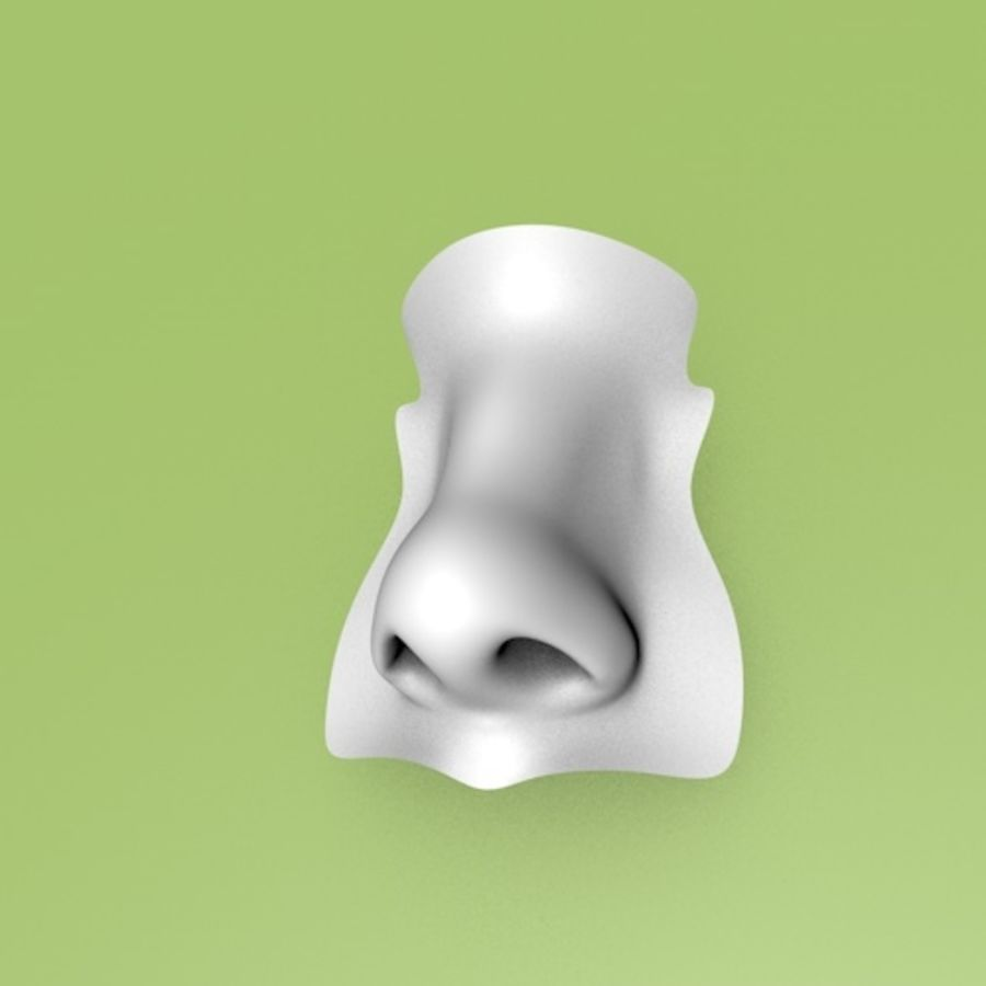 Realistic Nose of a beautiful Woman royalty-free 3d model - Preview no. 6