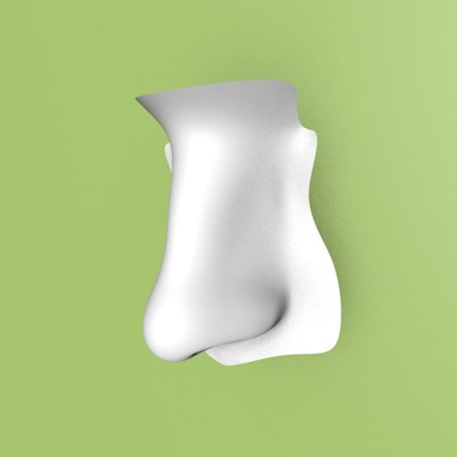 Realistic Nose of a beautiful Woman royalty-free 3d model - Preview no. 8