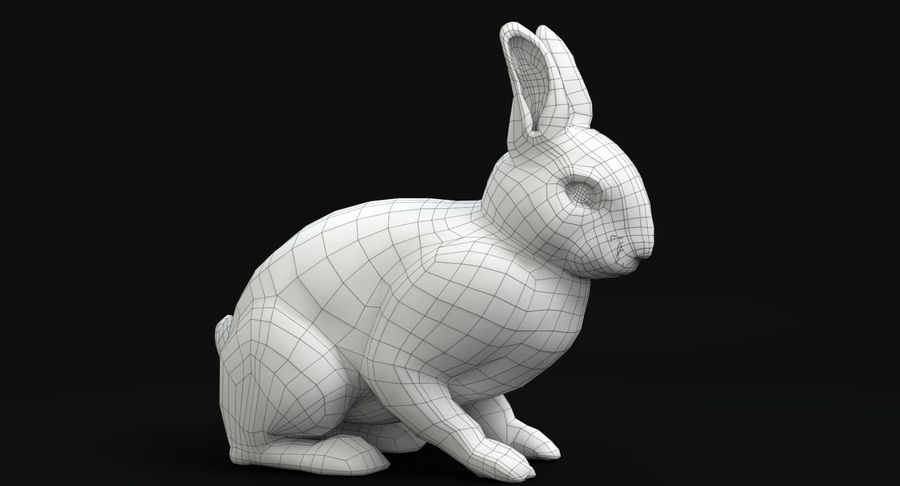 lapin royalty-free 3d model - Preview no. 11