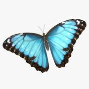 Emperor Butterfly 3d model