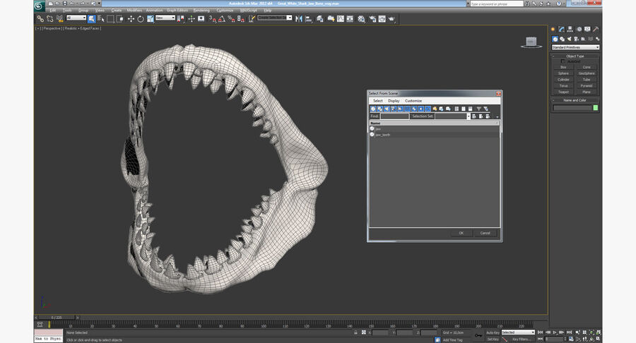 Great White Shark Jaw Bone 3D Model royalty-free 3d model - Preview no. 14