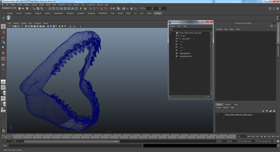 Great White Shark Jaw Bone royalty-free 3d model - Preview no. 15