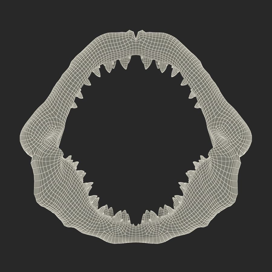 Great White Shark Jaw Bone royalty-free 3d model - Preview no. 19