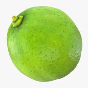 Whole Lime 3d model