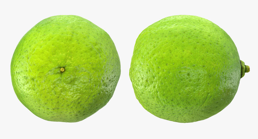 Whole Lime royalty-free 3d model - Preview no. 5
