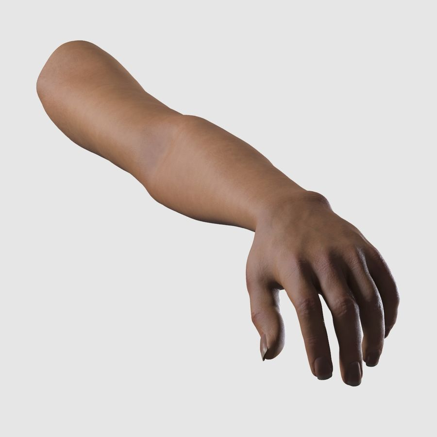 Ręce kobiety royalty-free 3d model - Preview no. 5