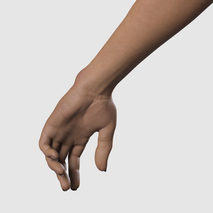 Руки женщины royalty-free 3d model - Preview no. 2
