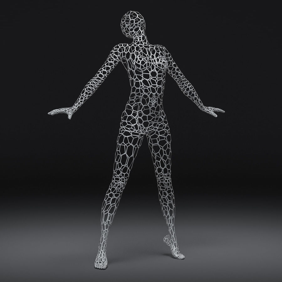 Female wire mannequin 2 3D Model $29 - .max .obj .fbx - Free3D