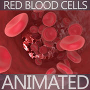 Blood Cells 3d model