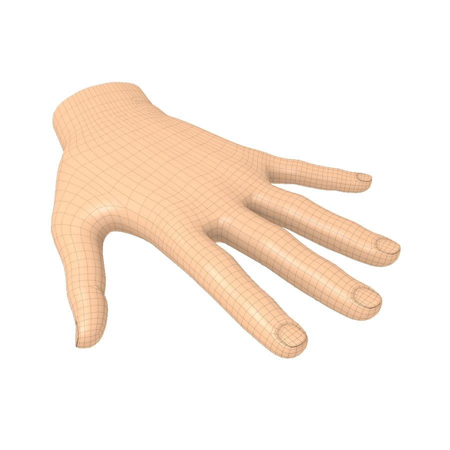 Hand Basemesh royalty-free 3d model - Preview no. 7