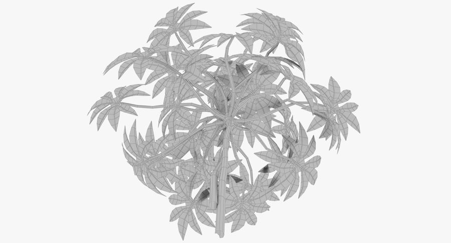 Small Plant royalty-free 3d model - Preview no. 13