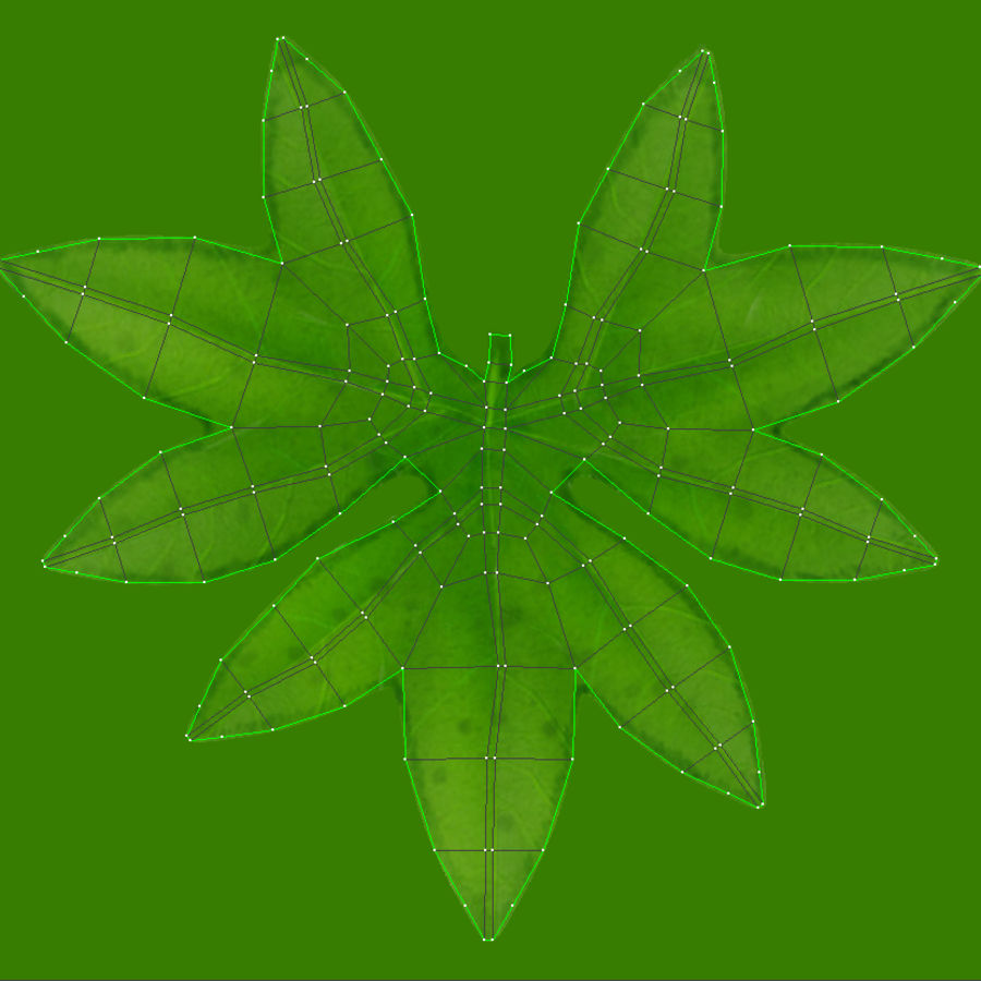 Small Plant royalty-free 3d model - Preview no. 14