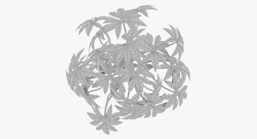 Small Plant royalty-free 3d model - Preview no. 11