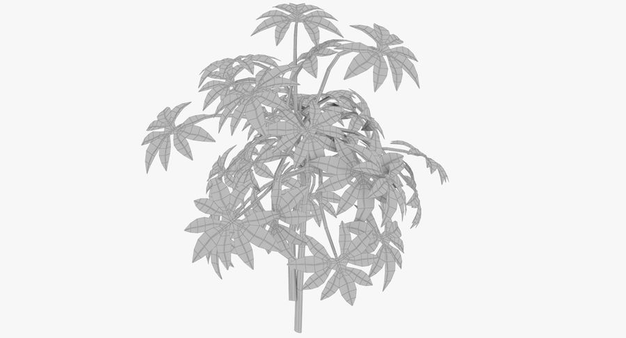 Small Plant royalty-free 3d model - Preview no. 9
