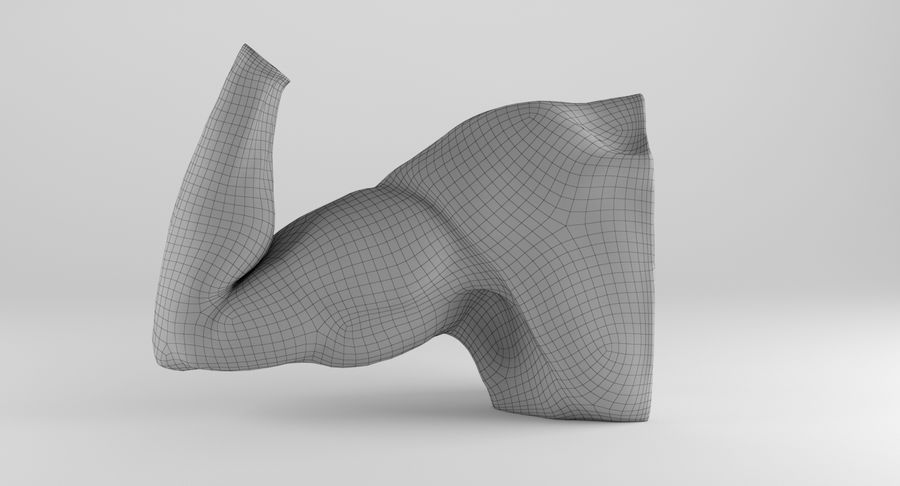 Anatomía del brazo royalty-free modelo 3d - Preview no. 14