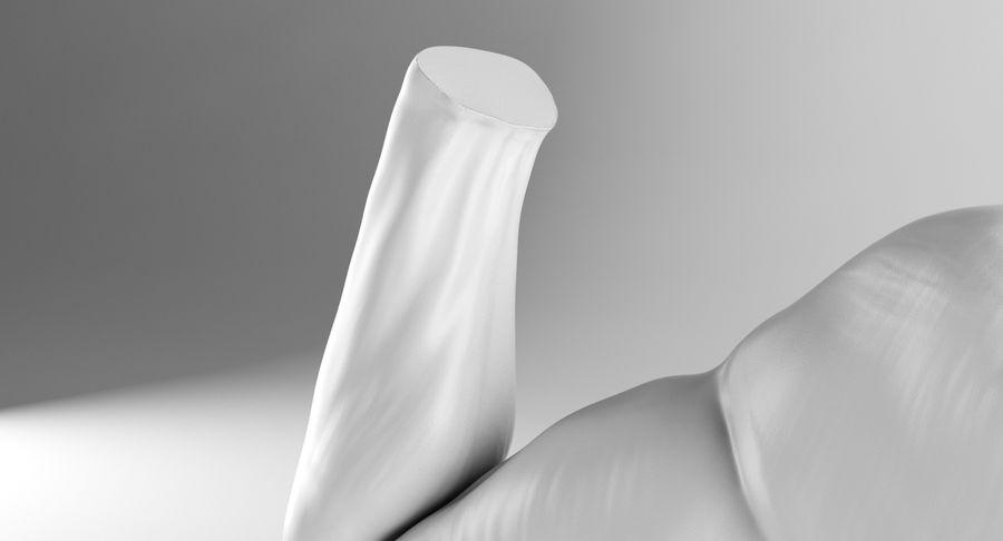 Anatomía del brazo royalty-free modelo 3d - Preview no. 10