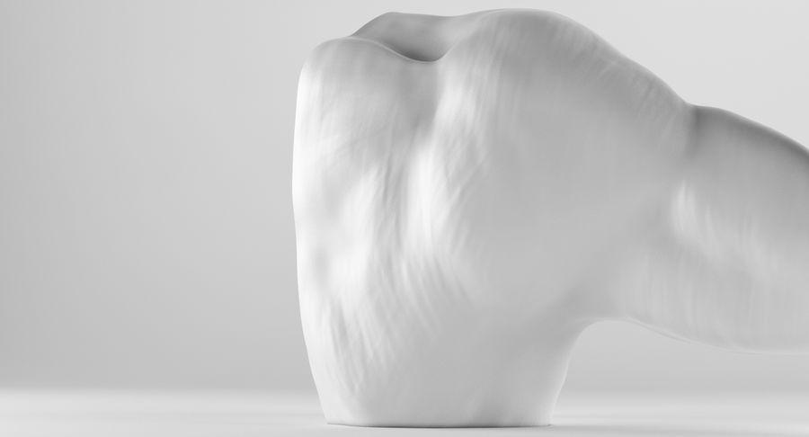 Anatomía del brazo royalty-free modelo 3d - Preview no. 11