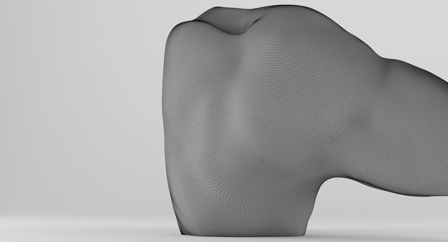 Anatomía del brazo royalty-free modelo 3d - Preview no. 25